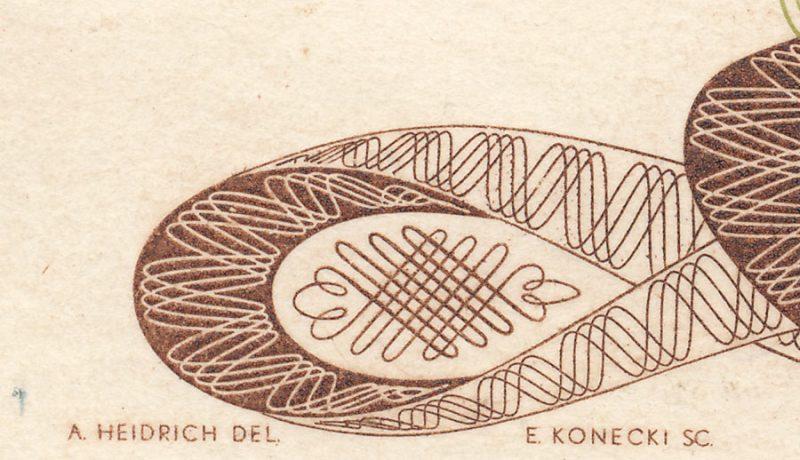 Sygnatury rytowników awersu na banknocie 500 złotych 1971 z Marią Skłodowską-Curie
