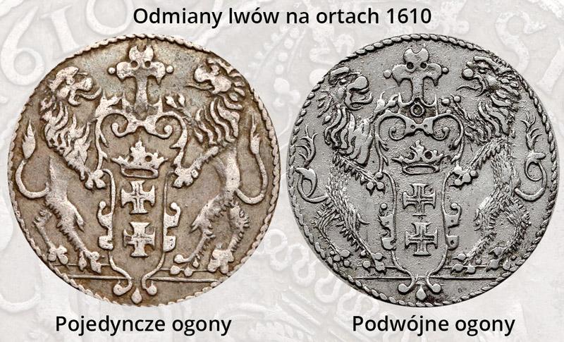 Porównanie ogonów lwów na rewersie ortów gdańskich 1610