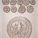Wykopalisko Wieleńskie 1876 Karol Beyer Tablica VIII